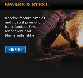 Subscribe to Sparks and Steel